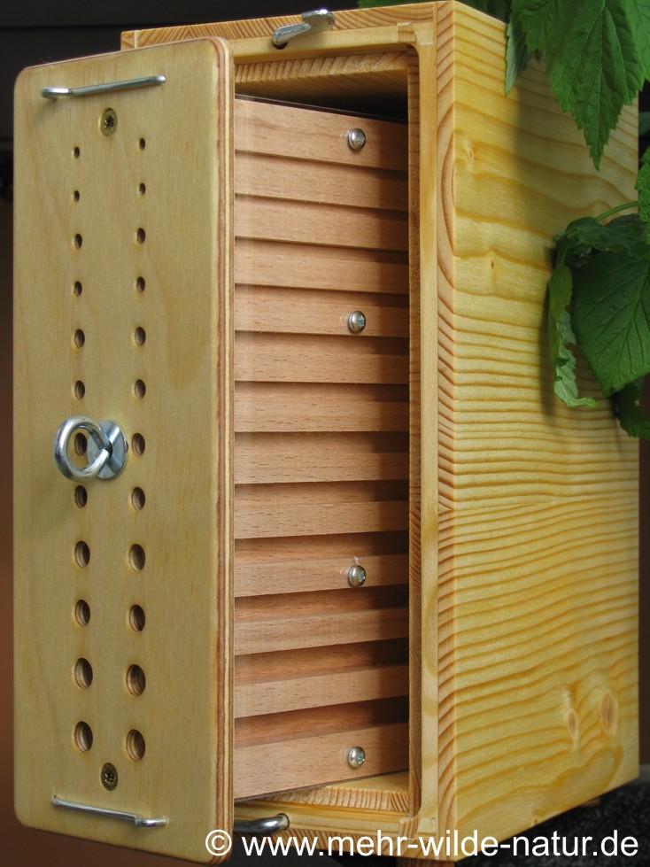 Dies ist eine Beobachtungsnisthilfe für verschiedene Wildbienen