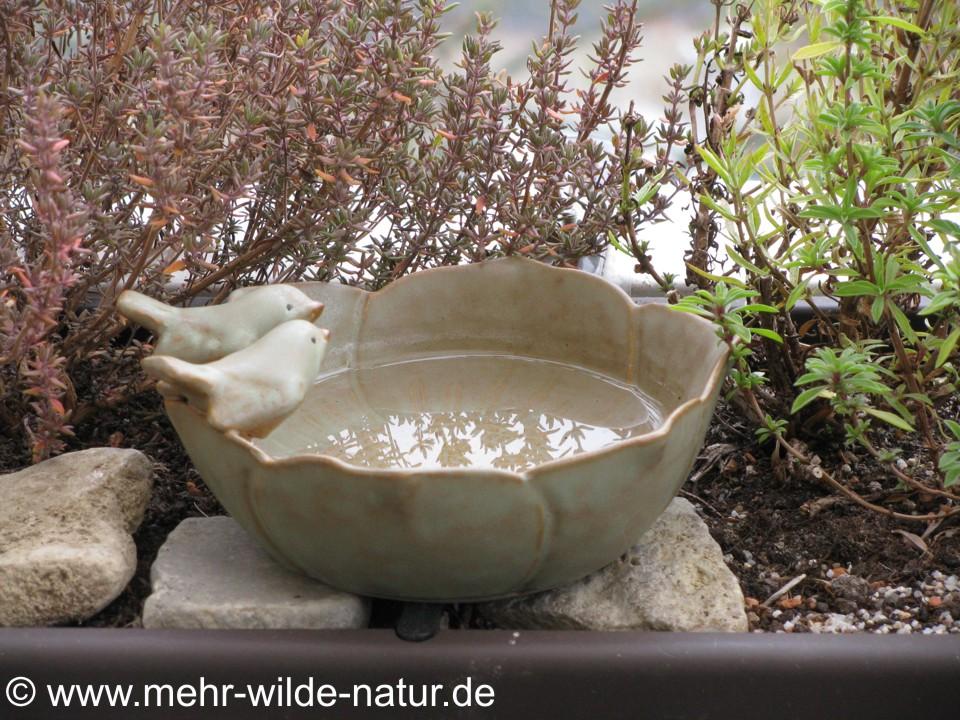 Eine kleine, leicht zu reinigende Vogeltränke, die auch Platz im Blumenkasten findet.