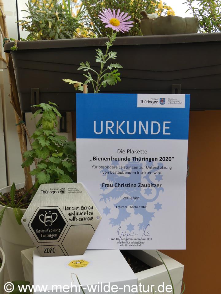 """Ehrung als """"Bienenfreund Thüringen 2020"""""""