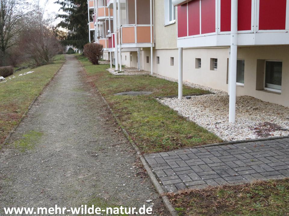 Rasenflächen vorm Haus, wenn sich niemand um eine Bepflanzung kümmern mag.